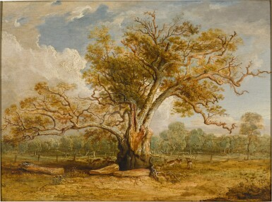 View 1. Thumbnail of Lot 439. An oak tree in Richmond Park with a herd of fallow deer beside it.