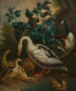 ATTRIBUTED TO AERT SCHOUMAN DORDRECHT 1710 - 1792 THE HAGUE [ATTRIBUÉ À AERT SCHOUMAN DORDRECHT 1710 - 1792 LA HAYE] | DUCKS BY A POND [CANARDS PRÈS D'UNE MARE]