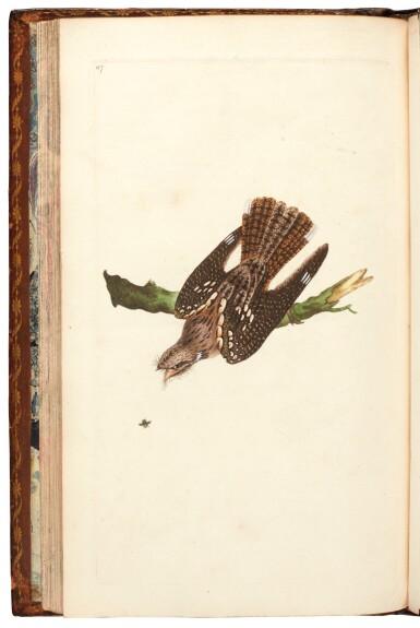 View 4. Thumbnail of Lot 7. Donovan | The Natural History of British Birds. London, 1799-1819, 10 volumes.