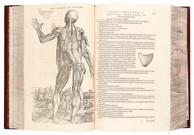 View 2. Thumbnail of Lot 55. Vesalius | De humani corporis fabrica, Basel, 1555, modern crushed burgundy morocco.
