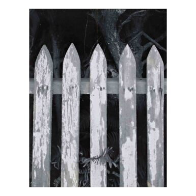View 1. Thumbnail of Lot 74. Picket Fence.