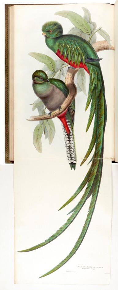 View 5. Thumbnail of Lot 37. GOULD, J. | Monograph of the Trogonidae, London 1835-1838, folio.