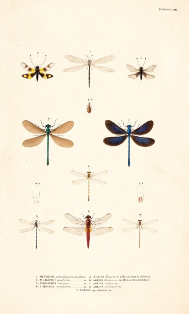 View 2. Thumbnail of Lot 161. Album with a collection of 73 watercolours and drawings to illustrate Expédition scientifique de Morée, 1832-36.