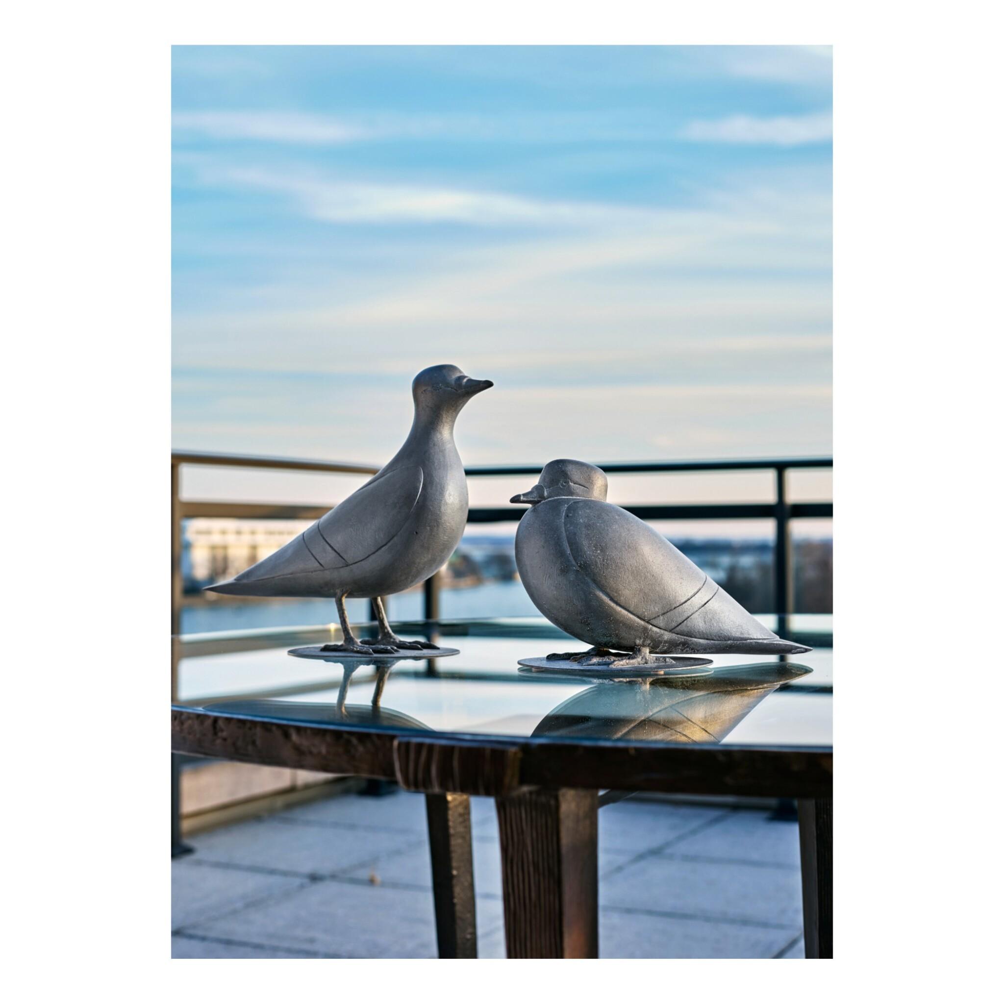 View full screen - View 1 of Lot 125. Pigeons de Southampton I & II.