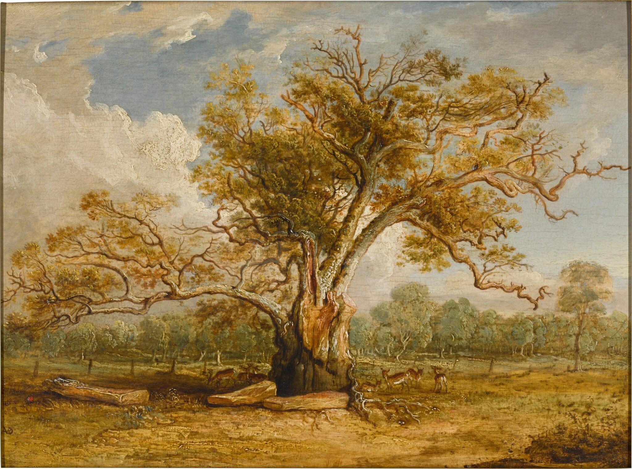 View full screen - View 1 of Lot 439. An oak tree in Richmond Park with a herd of fallow deer beside it.