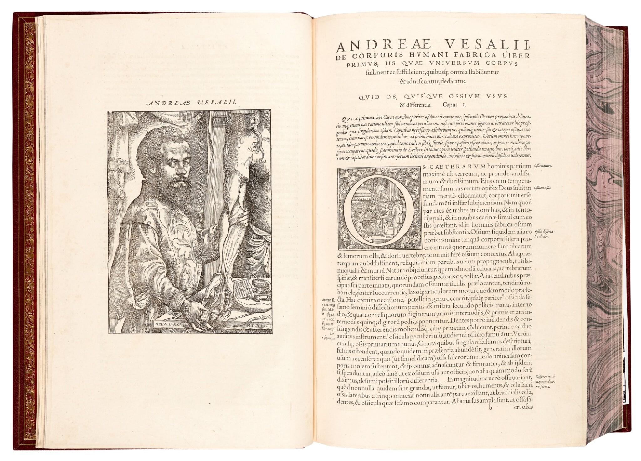View full screen - View 1 of Lot 55. Vesalius | De humani corporis fabrica, Basel, 1555, modern crushed burgundy morocco.