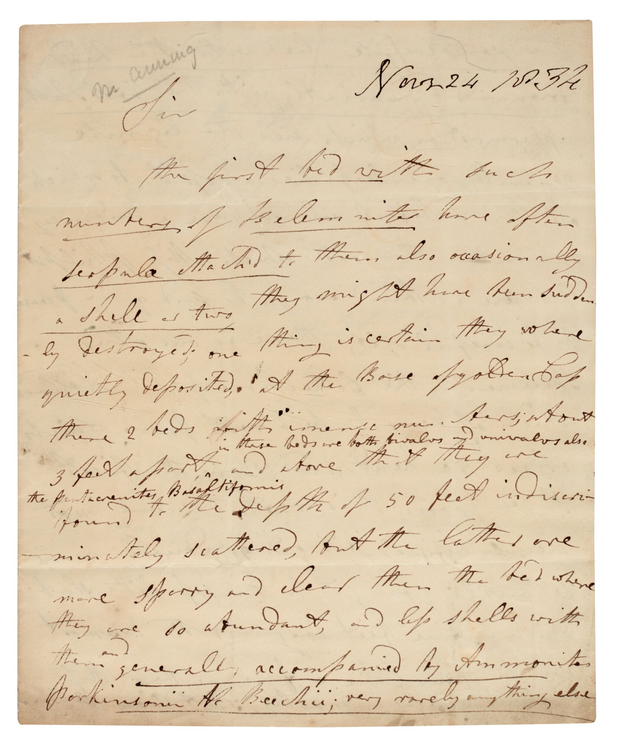 View full screen - View 1 of Lot 1. Mary Anning | Autograph letter signed, to William Buckland, 24 November 1834.