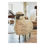 Mouton de Laine
