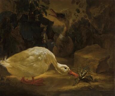 ABRAHAM BUSSCHOP | Ducks in a landscape