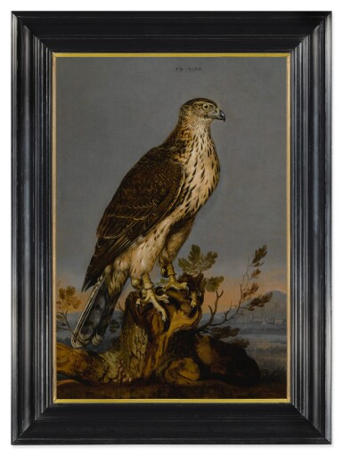 View 3. Thumbnail of Lot 105. CARSTIAN LUYCKX  |  A BROWN GYRFALCON PERCHED ON A TREE TRUNK WITH A LANDSCAPE BEYOND.