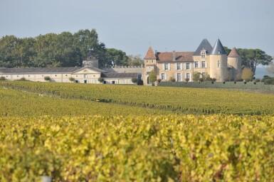 View 1. Thumbnail of Lot 114. Château d'Yquem 1983 (12 BT).