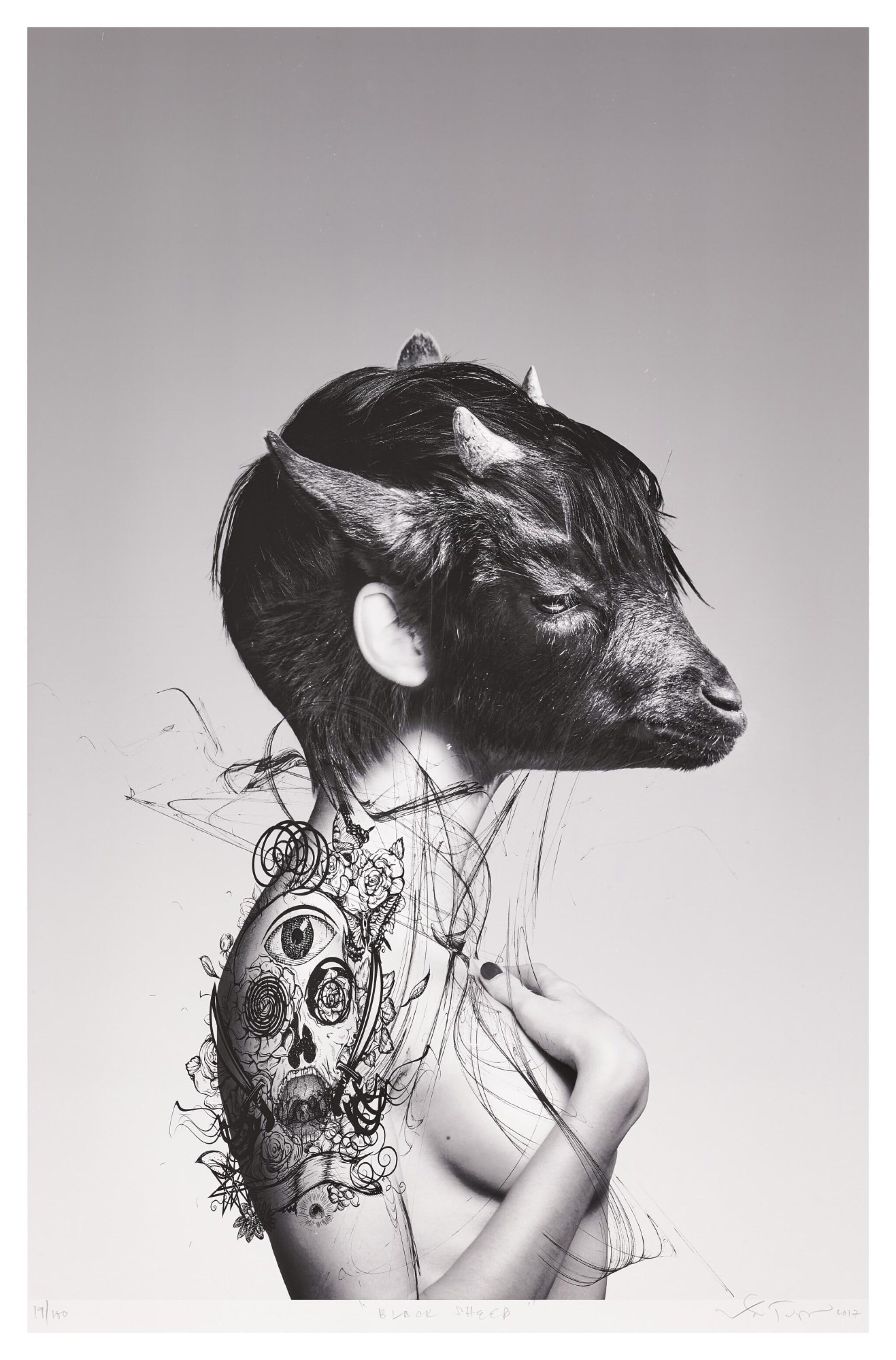 RONALD VENTURA   BLACK SHEEP