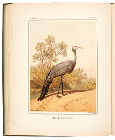 View 3. Thumbnail of Lot 2. Blaauw | A monograph of the cranes, 1897.