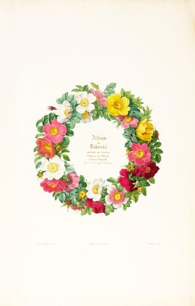 Redouté | Album de Redouté, [1824]