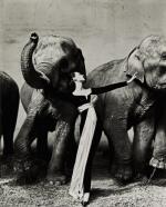 RICHARD AVEDON | 'DOVIMA WITH ELEPHANTS, EVENING DRESS BY DIOR, CIRQUE D'HIVER', PARIS, 1955