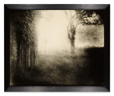 View 2. Thumbnail of Lot 73. Untitled (Deep South #41).