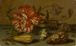 BALTHASAR VAN DER AST |  STILL LIFE WITH A CARNATION AND A CROCUS, TWO SHELLS, AND A DRAGONFLY, SPIDER AND FLIES, ALL ON A STONE LEDGE