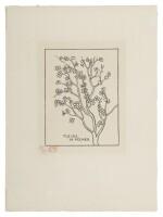 Fleurs de pêcher (Guérin 171)