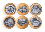 SIX CONCHYLIORUM PLATES BY PIERO FORNASETTI, MID-20TH CENTURY