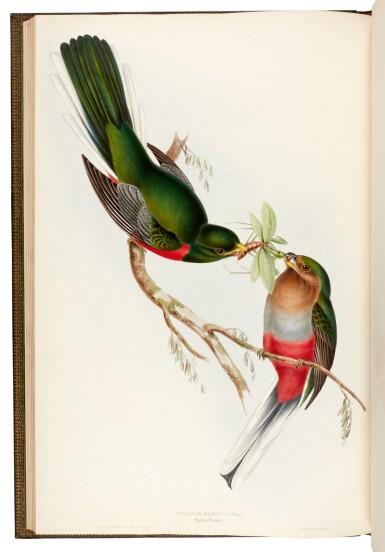 View 4. Thumbnail of Lot 37. GOULD, J. | Monograph of the Trogonidae, London 1835-1838, folio.