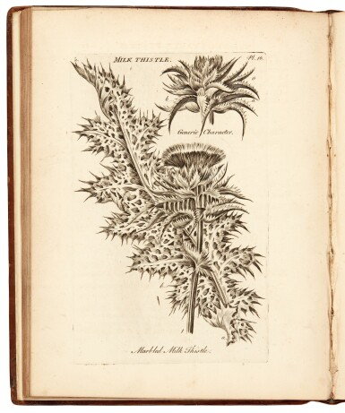 View 1. Thumbnail of Lot 15. Hill | The Vegetable System, 1759-1764, 6 volumes bound in 7.