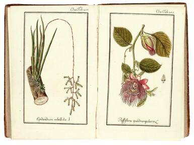 View 2. Thumbnail of Lot 51. Zorn, ed., and [Jacquin] | Dreyhundert auserlesene Amerikanische Gewachse, 1785-88, 3 volumes.