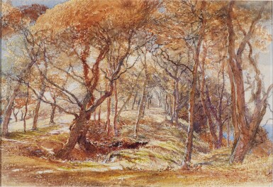 View 1. Thumbnail of Lot 213. A woodland study - possibly Clovelly Park, Devon.