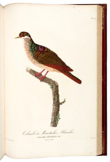 View 2. Thumbnail of Lot 24. Pauline Knip | Les Pigeons, 1808–1811, the Marcel Jeanson copy.