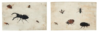View 1. Thumbnail of Lot 132. GERMAN SCHOOL, CIRCA 1600    A PAIR OF STUDIES OF A BEETLE AND OTHER INSECTS.