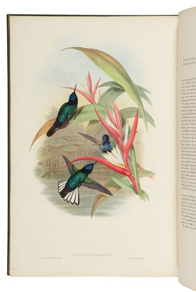 Gould, John | A very fine, inscribed copy