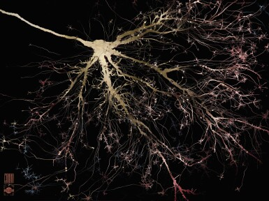 View 1. Thumbnail of Lot 49. DR. GREG DUNN IN COLLABORATION WITH DR. BRIAN EDWARDS | ACTION POTENTIAL, 2017.