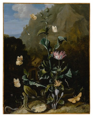 View 1. Thumbnail of Lot 525. Still life of a thistle and other flowers surrounded by moths, a dragonfly, a lizard and a snake, in a landscape.