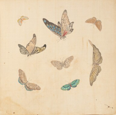 View 4. Thumbnail of Lot 290. Study of butterflies, China, 19th century.
