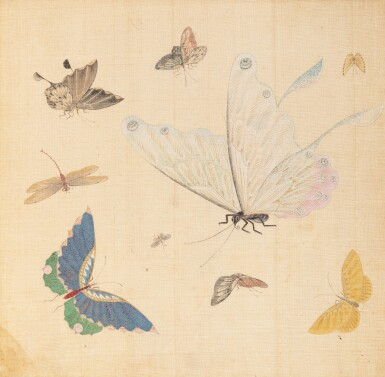 View 1. Thumbnail of Lot 290. Study of butterflies, China, 19th century.