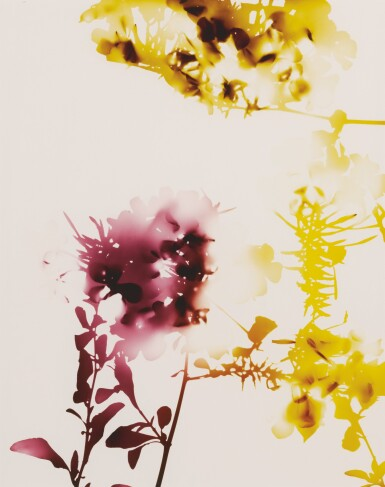 View 2. Thumbnail of Lot 58. JAMES WELLING | SELECTED IMAGES FROM FLOWERS (#005, #008, #009).