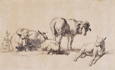 KAREL DUJARDIN | Studies of sheep