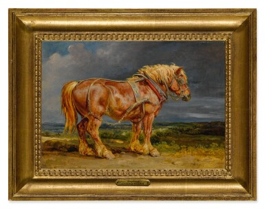 The Shire Horse Elephant in an Extensive Landscape