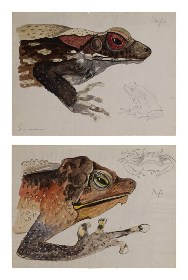 View 2. Thumbnail of Lot 4. THREE WORKS: BUFO TOADS.