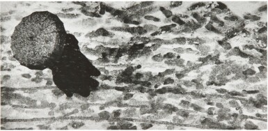 View 1. Thumbnail of Lot 23. W. EUGENE SMITH | UNTITLED (AS FROM MY WINDOW I SOMETIMES GLANCE).