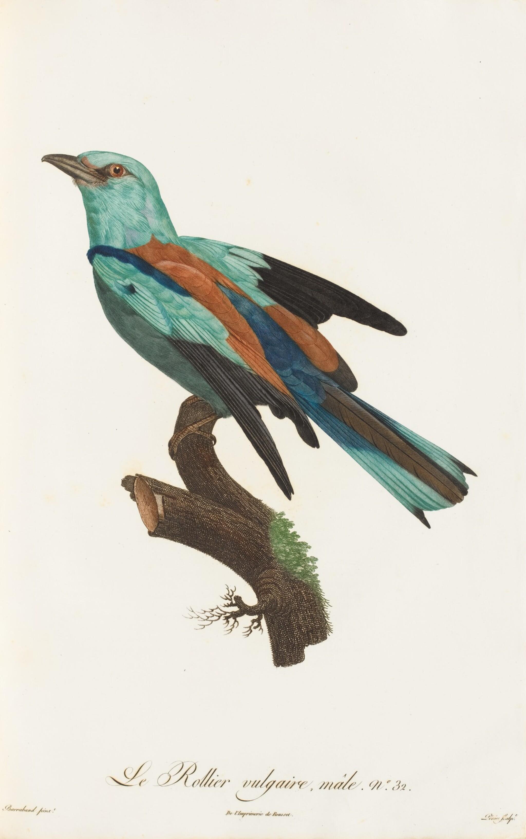 View full screen - View 1 of Lot 10. LEVAILLANT. Histoire naturelle des oiseaux de Paradis... Paris, [1801-]1806. 2 vol. grand in-folio. Demi-percaline..