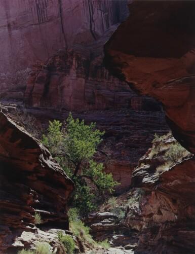 View 9. Thumbnail of Lot 70. 'Glen Canyon'.