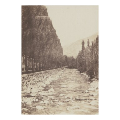 W.H. GUEBHARD | ALLÉE OF TREES BORDERING THE GAVE RIVER