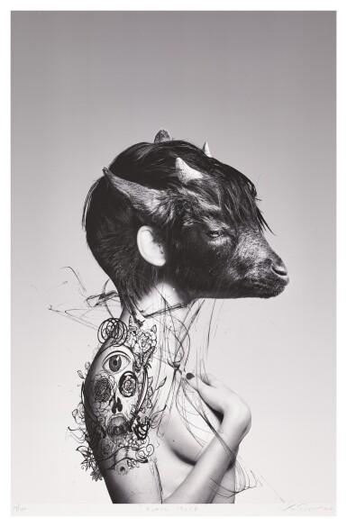 RONALD VENTURA | BLACK SHEEP