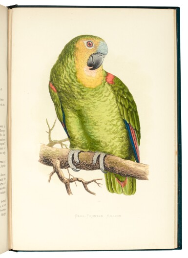 View 4. Thumbnail of Lot 13. Greene | Parrots in Captivity, 1884-1887, [but 1892], 3 volumes.