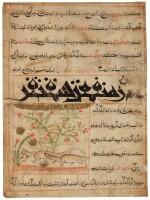 A PAIR OF SKINKS (SAQANQUR): AN ILLUSTRATED FOLIO FROM THE MANAFI' AL-HAYAWAN OF IBN BAKHTISHU, WESTERN PERSIA, ILKHANID, CIRCA 1300-10