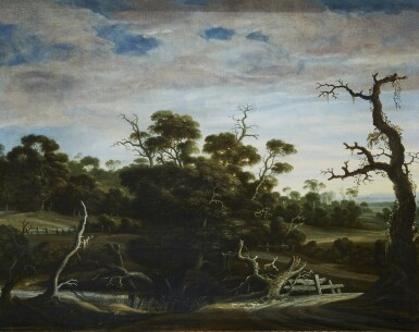 View 1. Thumbnail of Lot 208. JOACHIM GOVERTSZ. CAMPHUYSEN | HILLY LANDSCAPE WITH TREES.