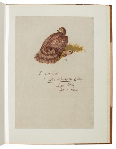 View 4. Thumbnail of Lot 33. Archibald Thorburn | An album containing eight original drawings of birds of prey.