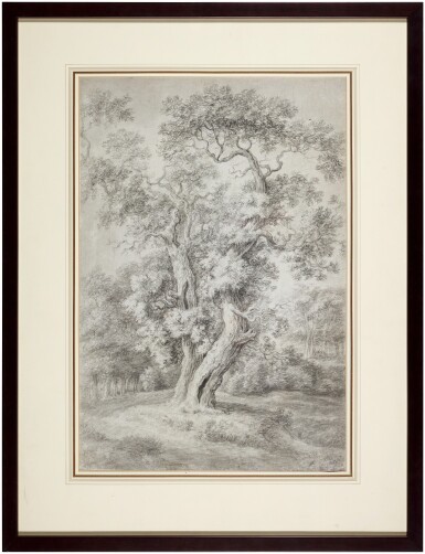 View 3. Thumbnail of Lot 43. Study of an Oak Tree in Woodland.