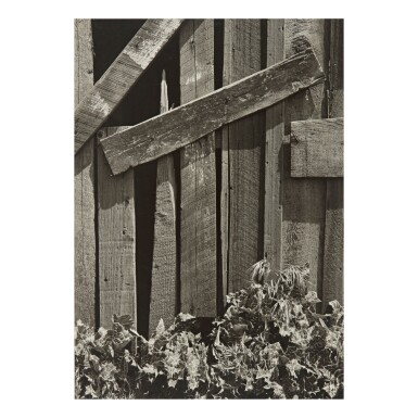 View 1. Thumbnail of Lot 43. ANSEL ADAMS | 'BOARDS AND THISTLES'.