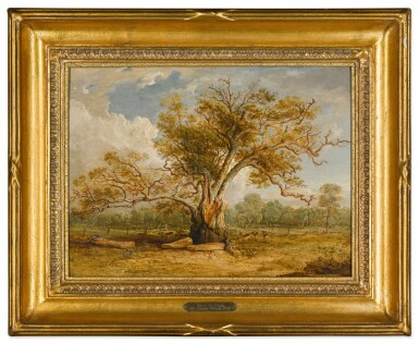 View 2. Thumbnail of Lot 439. An oak tree in Richmond Park with a herd of fallow deer beside it.